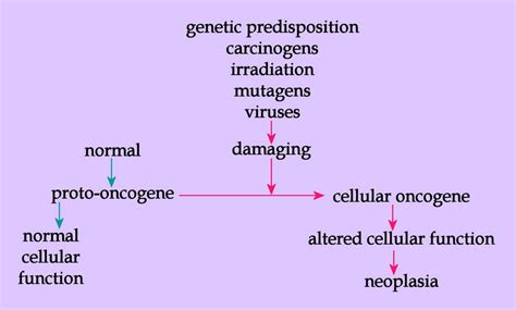 cancer oncogenes
