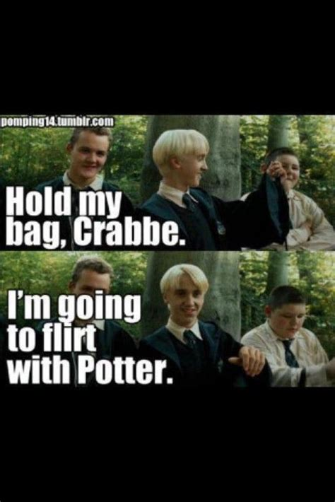 Drarry Memes - 143 best images about drarry on pinterest chibi toms and harry draco