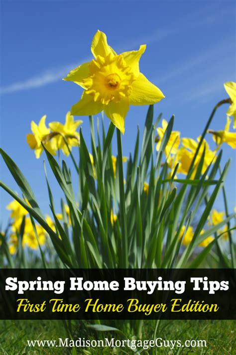 spring home tips spring home buying trips