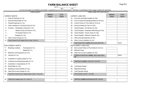 farm balance sheet template excel farm balance sheet template excel pdf rtf