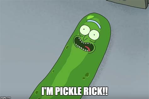 Pickle Meme - pickle rick imgflip