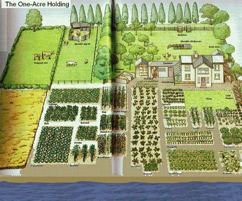 One-acre spread, how many people?   Homestead Layout ... 1 Acre Horse Farm Layout
