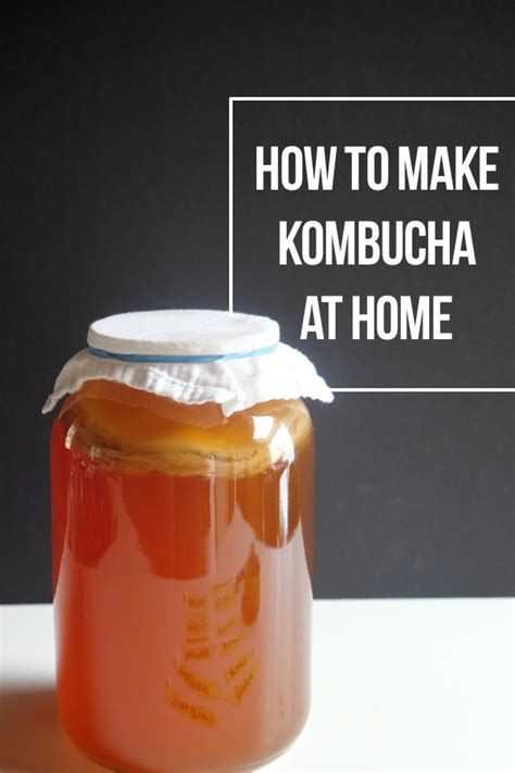 how to make kombucha at home shutterbean