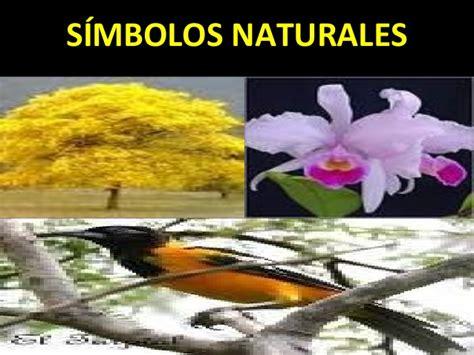 imagenes simbolos naturales venezuela s 237 mbolos patrios de la rep 250 blica bolivariana de venezuela