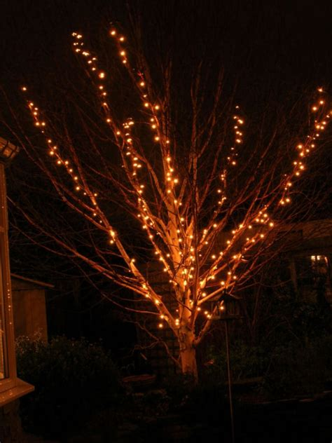 christmas lights on tree branches christmas decore