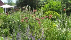 cottage garden plants and shrubs 171 margarite gardens