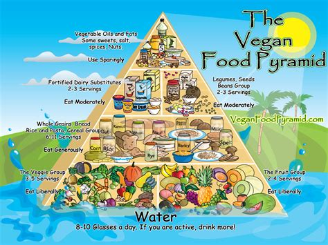 better food pyramid confessions of a reformed vegetarian the healthy home
