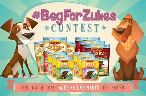 contest alert begforzukes on twitter with