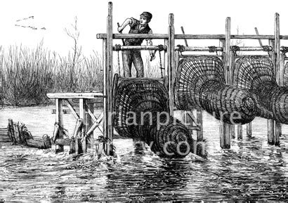 thames river family program eel traps on the river thames victorian picture library