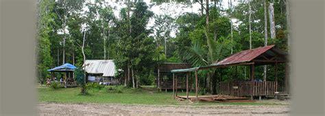 Koko Zico krik koko escapade carbet