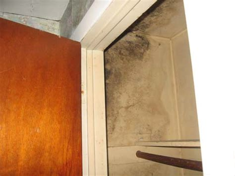 Stop Mould In Wardrobe by Preventing Moisture In Closet Tips