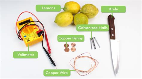 fruit battery fruit battery science project board is strawberry a fruit