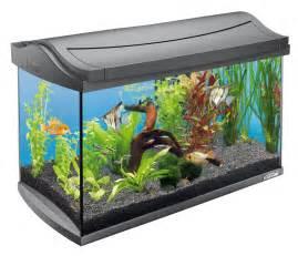 tetra aquarium komplettset 60 liter testsieger