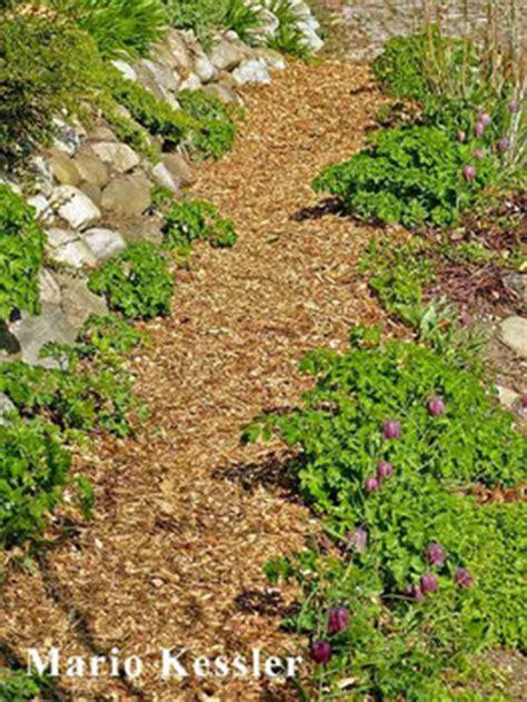 holzhackschnitzel garten hackschnitzelwege wildbienenschutz im naturgarten