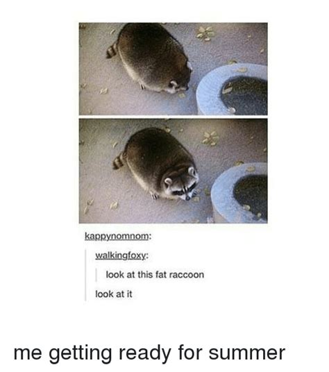 get ready for summer with these looks click for the top 10 summer 219 funny raccoon memes of 2016 on sizzle funny