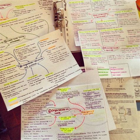 Studies Revision Lectures by 17 Best Images About Plan On Study Tips Study Snacks And Esl