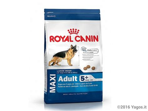 alimento per cani alimento per cani maxi 5 anni cibo per cani