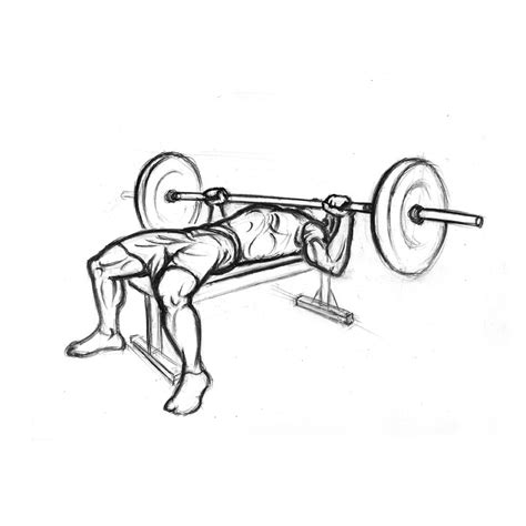Chest Exercises Bench Press With Barbell