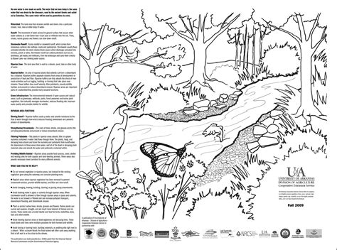 garden of eden printable activity sheets the garden of eden story coloring coloring pages