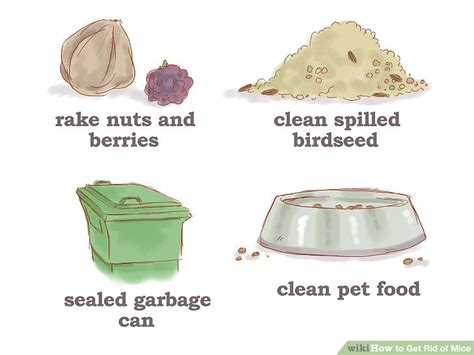 how to get rid of mice in kitchen cabinets how to get rid of mice 14 steps with pictures wikihow
