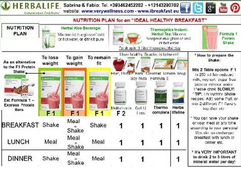 Herbalife Detox Diet Plan by I Ve Discovered How To Lose Weight Herbalife Cellular