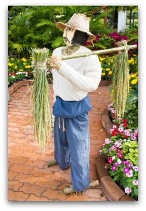 vegetable garden scarecrows ideas pictures  video