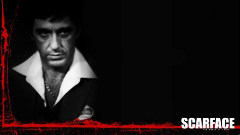scarface wallpaper for bedroom the world is yours wallpaper wallpapersafari