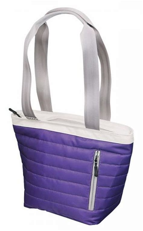 igloo duo 16 can insulated tote lunch cooler bag purple ebay