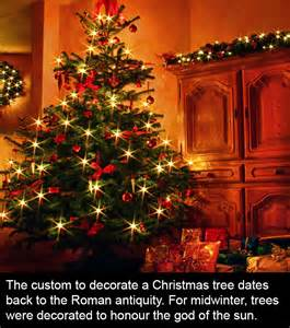 facts about christmas the christmas tree allagora