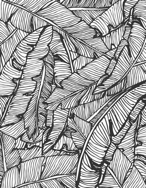 leaf pattern with lines seamless pattern design with hand drawn banana leaves