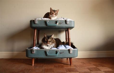 Bunk Beds For Cats 10 Trendy Upcycled Cat Beds Iheartcats All Cats Matter
