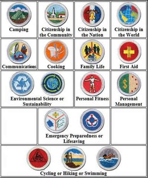 eagle required merit badges boy scouts of america troop