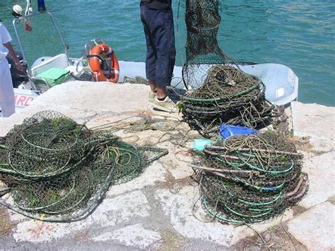 capitaneria di porto di pozzuoli freebacoli guardia costiera di baia sequestra reti e