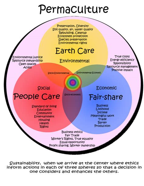 design activism definition permaculture shifting the paradigm of human chauvinism