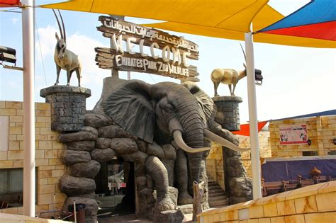 Emirates Zoo Timing | location and timings of emirates park zoo and resorts in