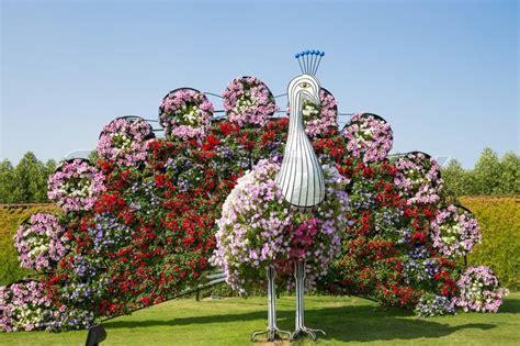 librerie pi禮 mondo dubai uae january 20 miracle garden in dubai on