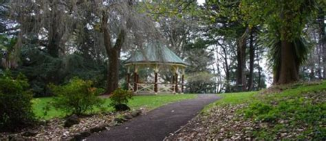 Wombat Hill Botanical Gardens Wombat Hill Botanical Gardens Are So Special