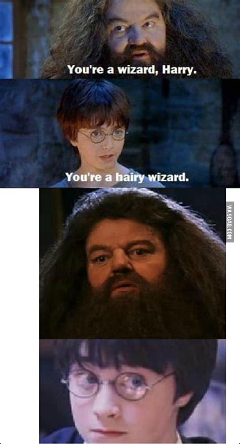 You Re A Wizard Harry Meme - you re a hairy wizard 9gag