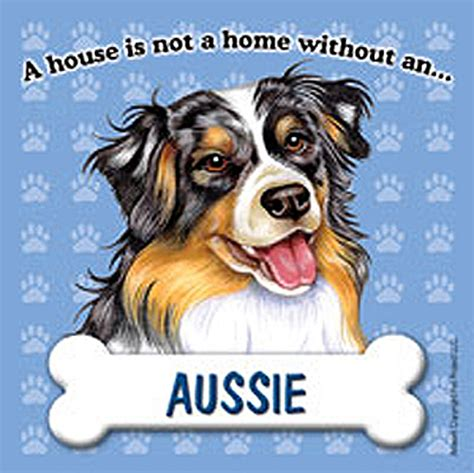 australian shepherd house dog australian shepherd dog magnet sign house is not a home