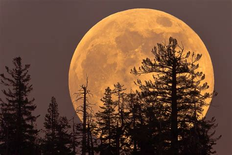 The Hunters Moon s moon on october 15 will be a stunning supermoon event