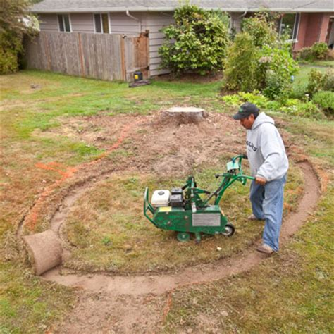 Grass Removal by Remove The Grass How To Build A Garden This House