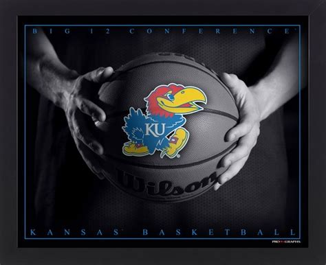 jayhawk tattoo designs 75 best images about i m a fan of on fan
