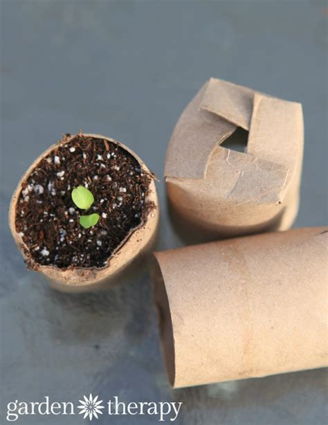 How To Make Starters With Toilet Paper Rolls - seed starting containers the real dirt part 1 garden