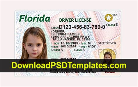 Fake Driving License Templates Psd Files Florida Drivers License Template