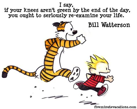 Calvin And Hobbes Quotes On Birthdays by Calvin And Hobbes Birthday Quotes Quotesgram Calvin