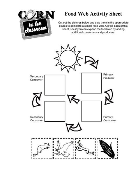 Food Web Worksheets by 14 Best Images Of Simple Food Chain Worksheets Food