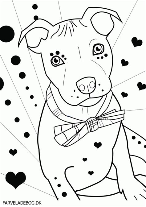 coloring pages pitbull puppies pitbull puppies coloring pages coloring home