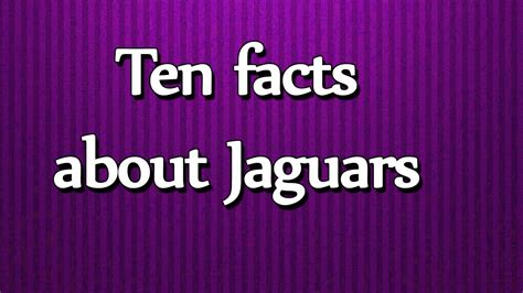 all about jaguars ten facts about jaguars all about facts utubetips