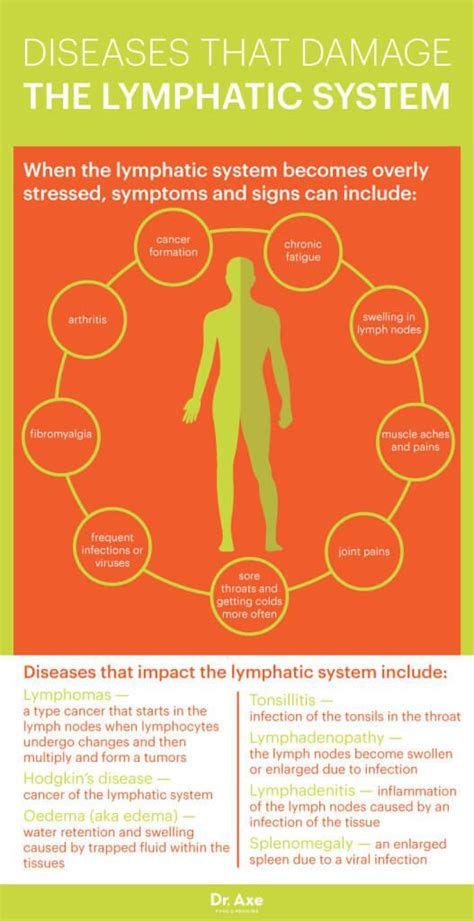 Isagenix Detox Symptoms by Lymphatic System How To Make It Strong Effective