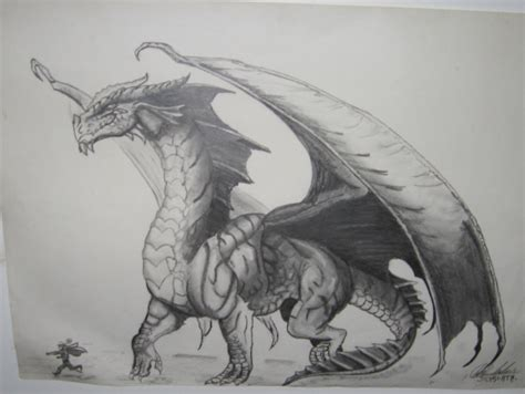 the best drawings of dragons red dragon drawing by blackmamba12 on deviantart